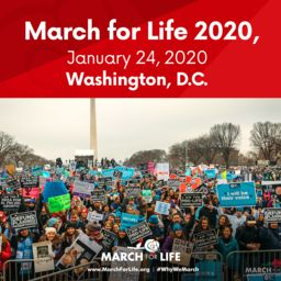March for Life: Fri. Jan 24th