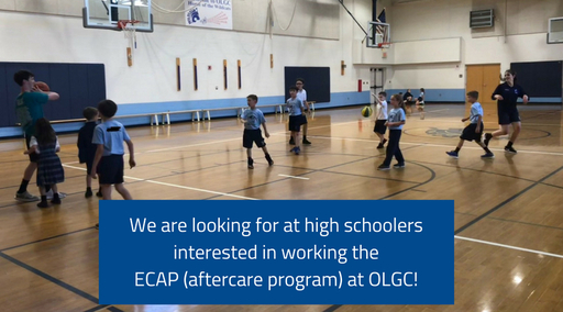 ECAP is looking for assistants